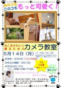 猫をかわいく撮るためのカメラ教室開催!